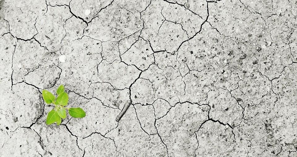 Climate change. Image: Pixabay