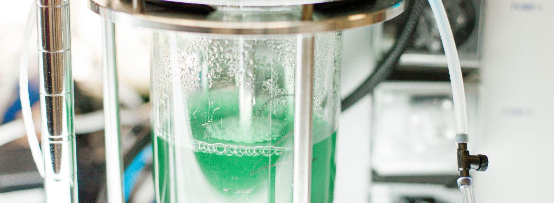 Lab equipment containing cyanobacteria in solution