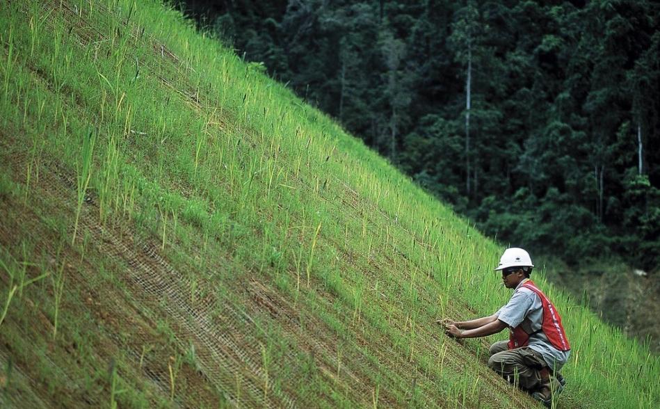 Rehabilitation work at Newmont's Batu Hijau-mine in Indonesia. Image: Newmont
